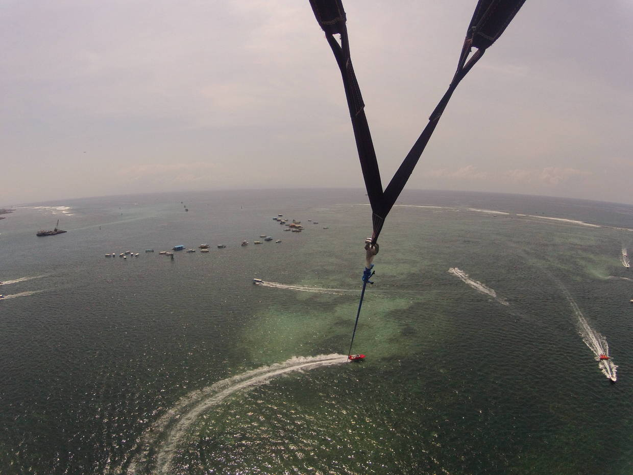 Wake Flying High