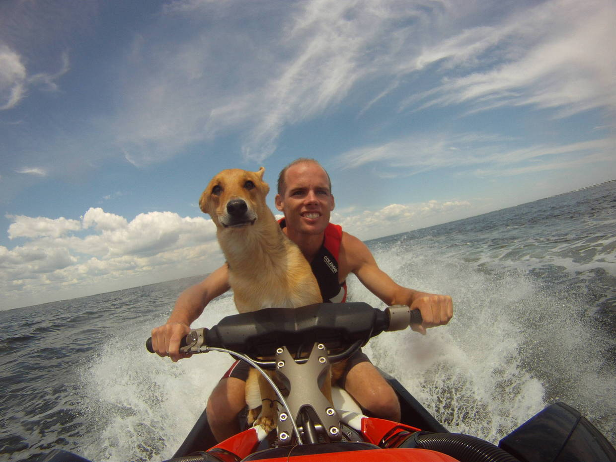 Wake It's a dog's life!