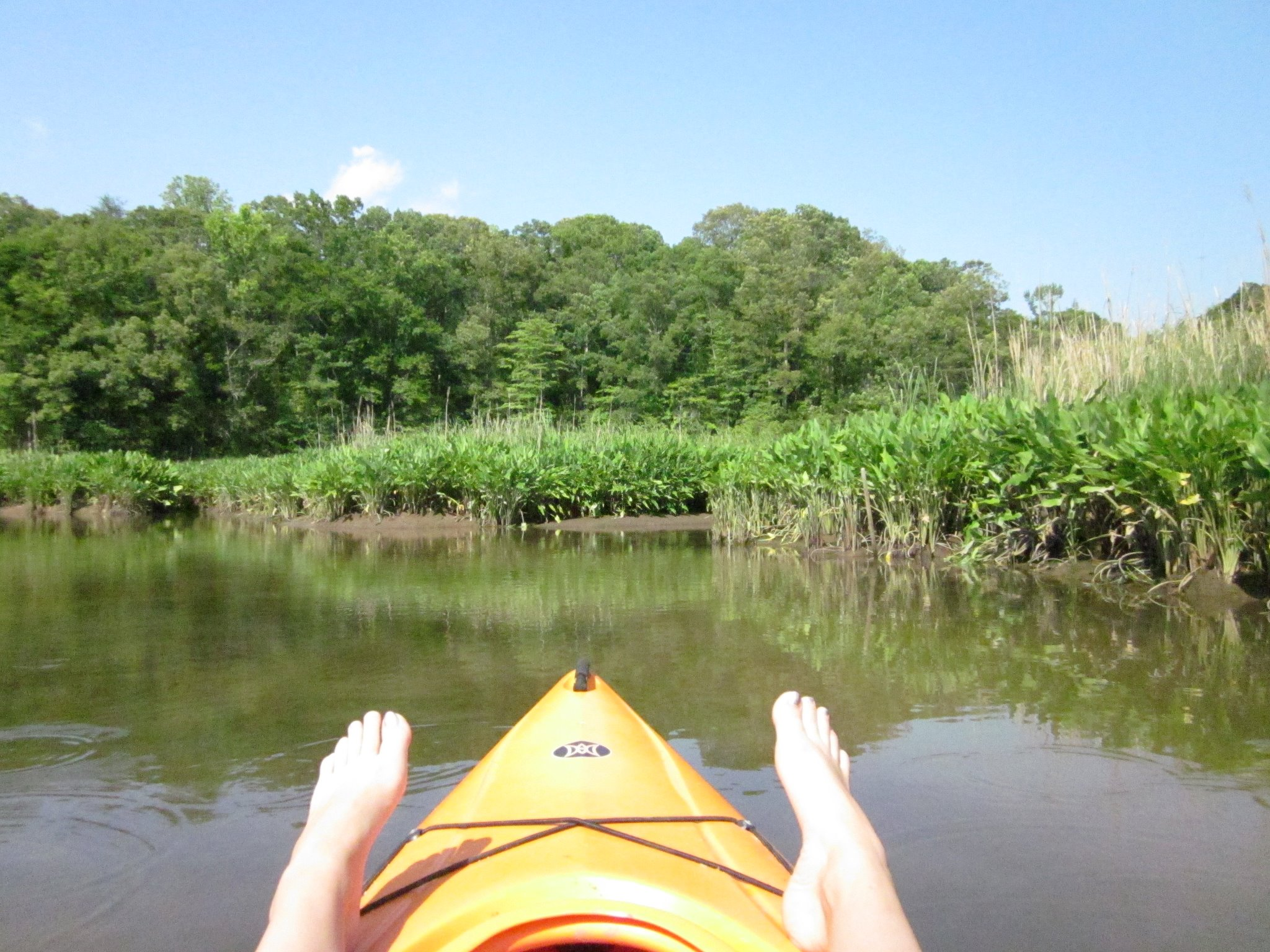 Kayak and Canoe Kayaking the Patuxent River, MD