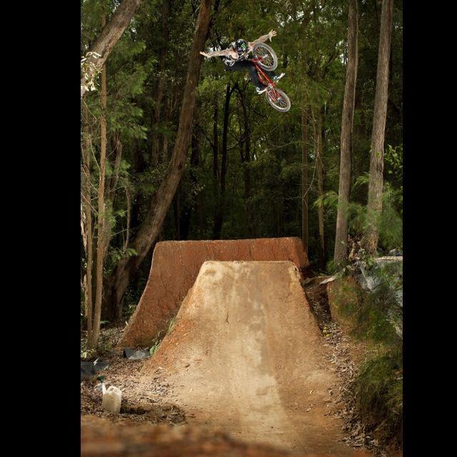 BMX Harry Main Fan Page