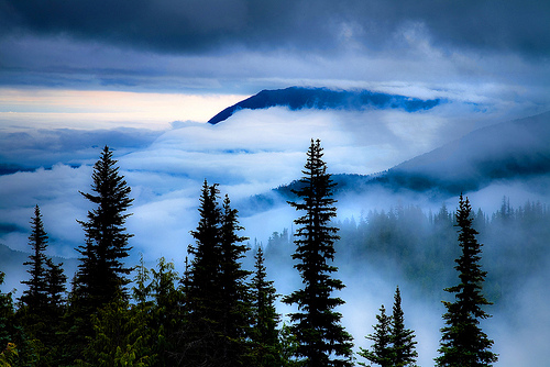 Camp and Hike Celestial Blues-Olympic National Park By Trevor Anderson