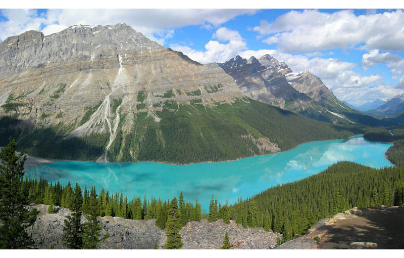 Camp and Hike Glacier-Fed Peyto Lake in Banff