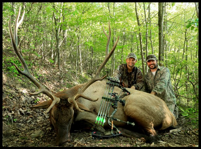 Hunting Bone Collectors and Realtree Road Trips hosts Michael Waddell and Nick Mundt took down 2 great bulls this week not out West, but in the Southeastern state of Kentucky! Bugling bulls rocked the hardwoods and in only 2 days, the guys had 2 great P&Y bulls o