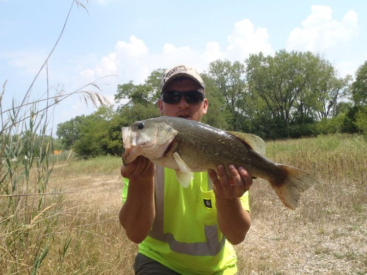 "Entertainment Christopher Rowlee reports:  ""Caught this beauty 24""1/2 out in Romeoville,IL on Rebel top water popper shad color, popping it just above some submerged weeds and boom swallow it!!! wished had a gro pro for this.."""