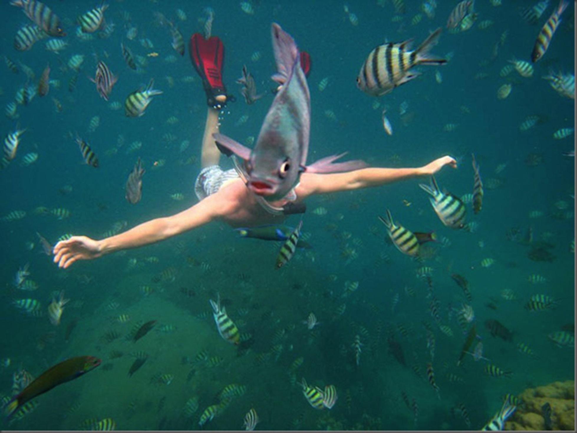 Зачем нужно изучать подводный мир 2