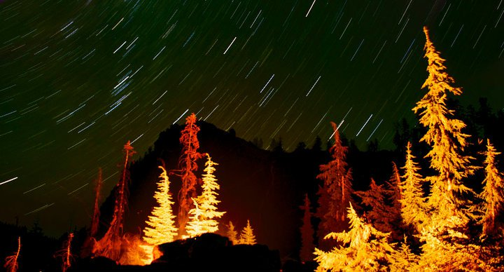 Camp and Hike 10/18/2010 Photo of the Week: 20-30 minute exposure of stars and trees lit by campfire. Copyright Mike Shoys 2010.  This picture is pretty self explanatory...amazing.