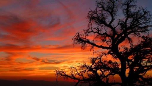 Camp and Hike Guidebook Getaway time! Like tough trails? Few are tougher than SoCal's Cactus to Clouds: http://bit.ly/TxgxGq