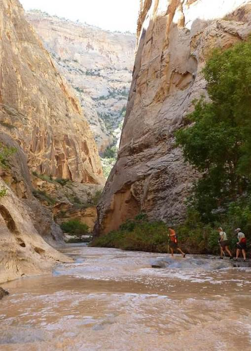 "Camp and Hike For Travel Tuesday this week, here's a peek inside Death Hollow during an Escalante Backpacking Weekend Getaway with REI Adventures.  The backpacking route crisscrosses the Escalante River, which is said to be the ""most crooked river in the world.""  What'"