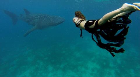 Wake GoPro athlete Mancino Roberta dives with whale sharks on a recent shoot for Vogue magazine.