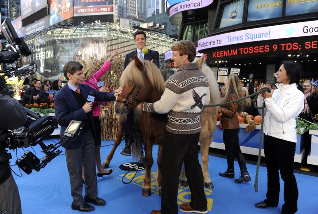 "Entertainment GOOD MORNING AMERICA - ""Born to Explore"" host and adventurer Richard Wiese brings along a couple of Icelandic horses to GOOD MORNING AMERICA, 10/28/11, airing on the ABC Television Network.  Josh Elliott shows off his equestrian skills in Times Square."