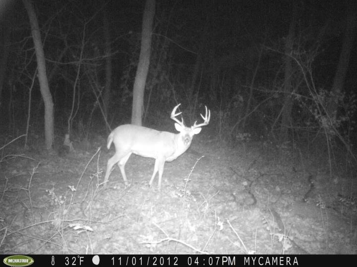Hunting Here's the one we're looking for tomorrow morning! Share photos of your big bucks on our wall.