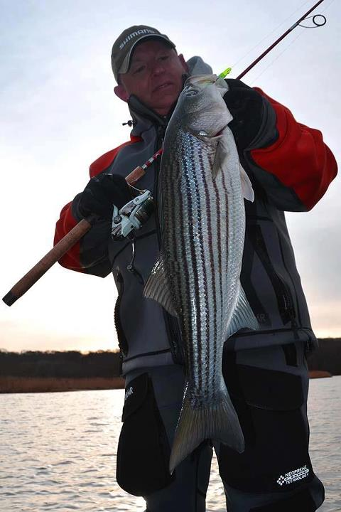 "Fishing ""28 degrees and windy as hell"", but the Striper bite is still on...