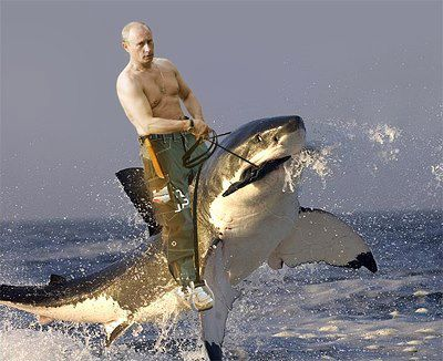 Entertainment Putin rides a shark.