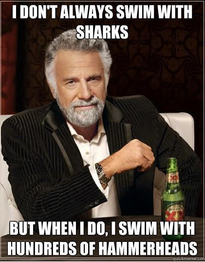 "Entertainment From ""The Most Interesting Man in the World""..."