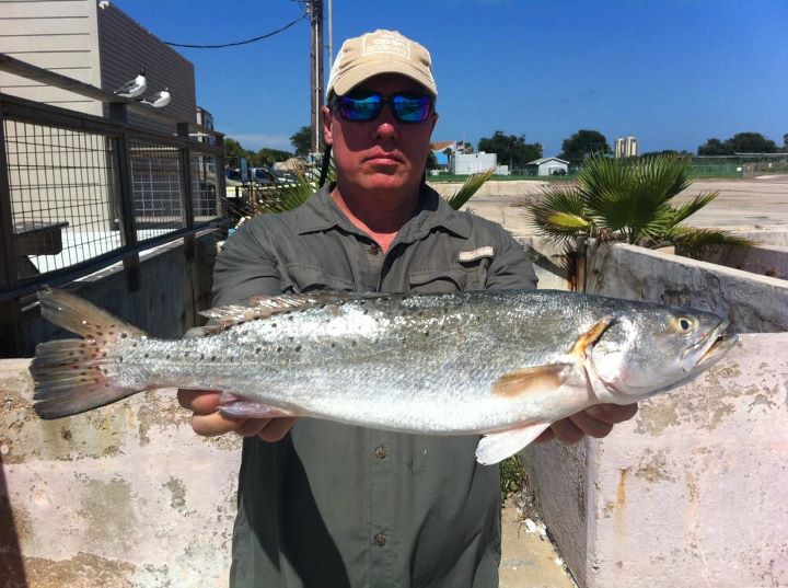 Fishing WOS team member Scott Calvin and his Speckled Trout caught in Galveston, TX.