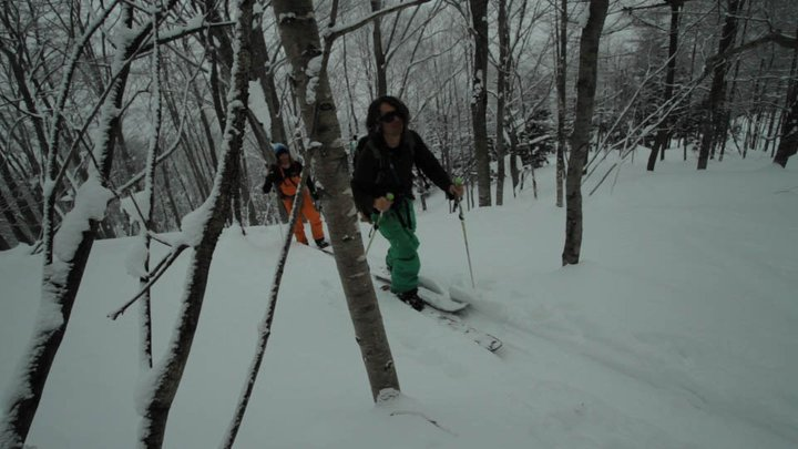 Snowboard Jeremy skinning through the trees in Japan.