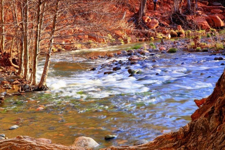 Camp and Hike 3rd Place: LeRoy Meyer snapped this beauty on a hike nearby Arizona's beautiful Oak Creek, in Sedona. Talk about an idyllic setting!