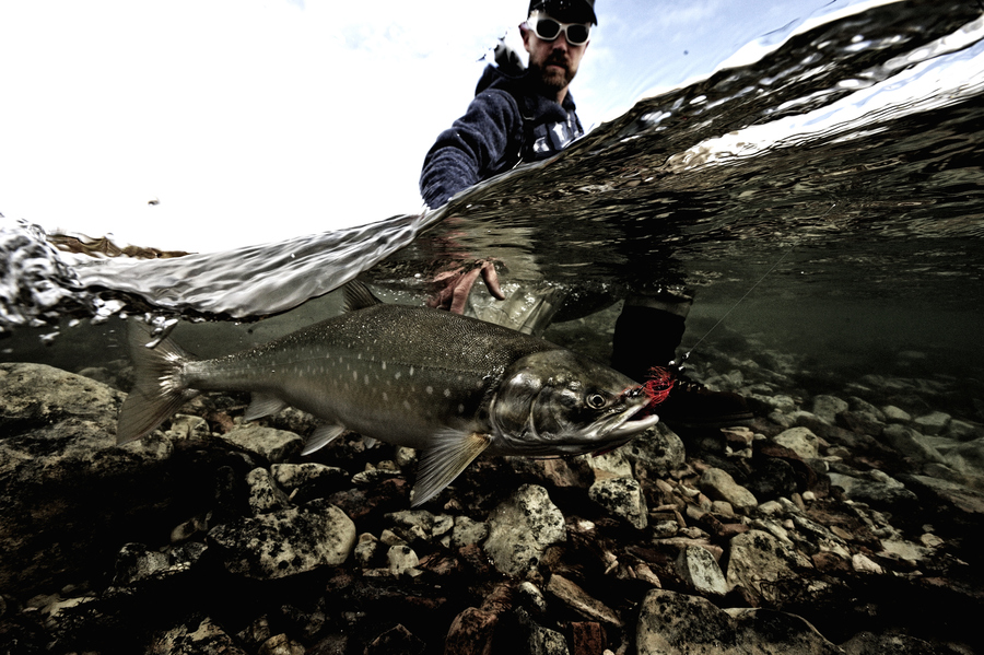 Flyfishing Peter and the arctic char
