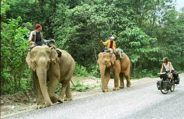 Ride with elephants in Laos