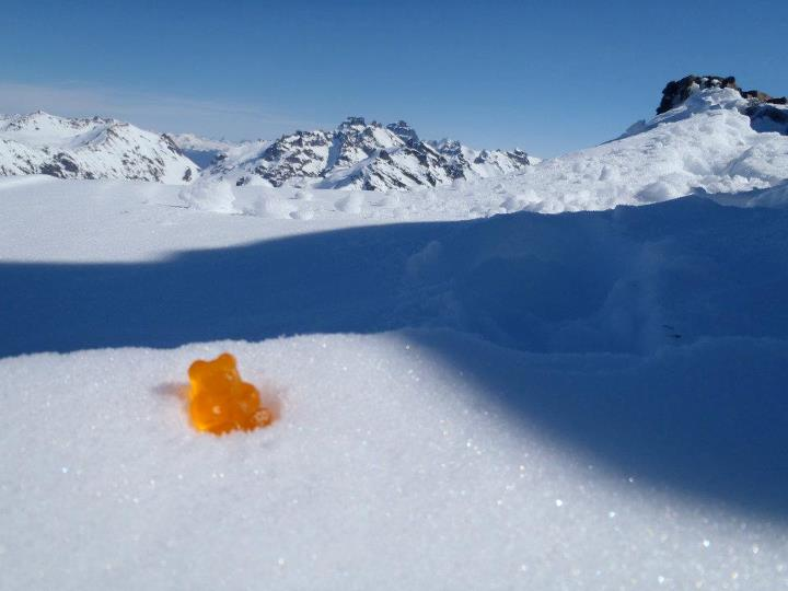 This photo is: Gummy Bear atop an unnamed peak in Patagonia, Chile.  Submitted: Josh Bossin