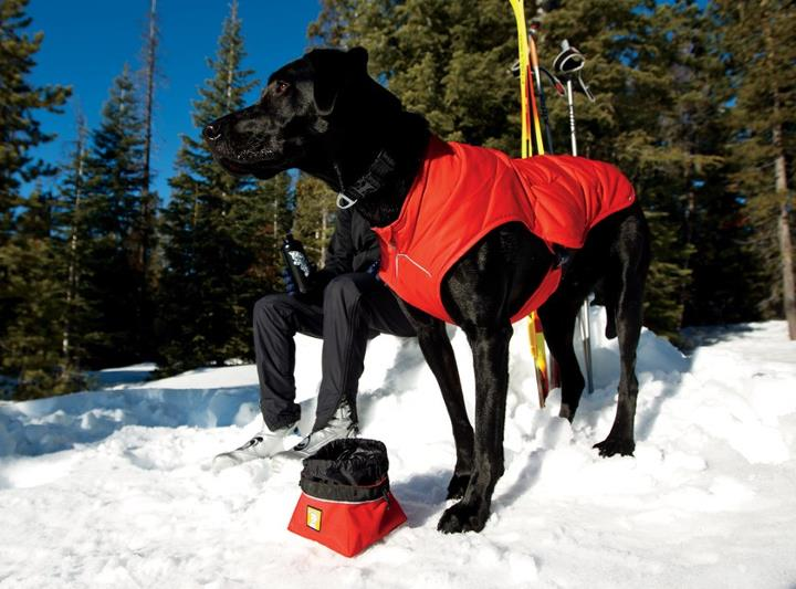 Camp and Hike What Ruffwear dog coat do you use and why?