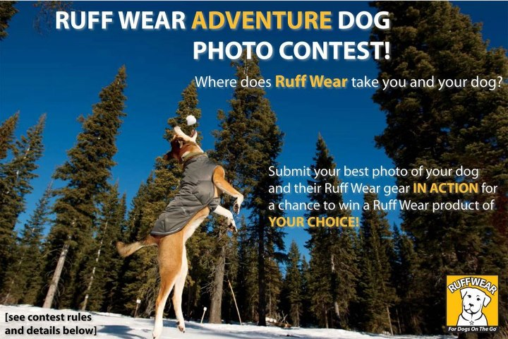 Entertainment http://dogblog.ruffwear.net/2011/12/07/ruff-wear-adventure-dog-photo-contest/