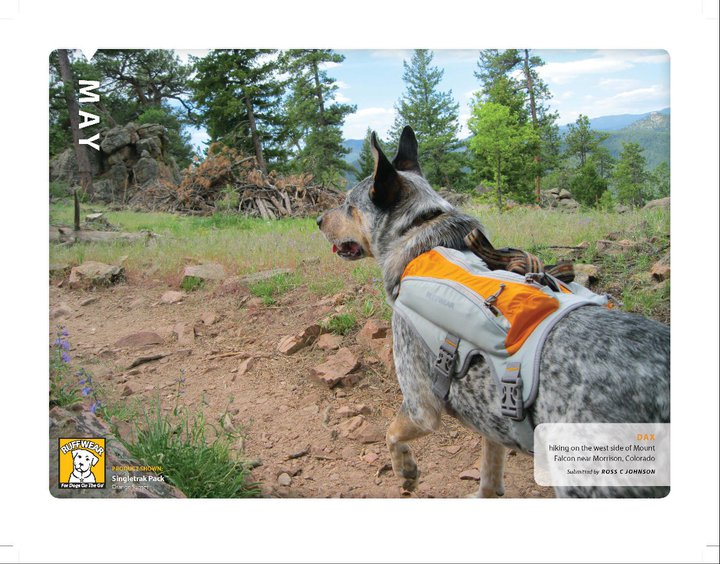 Camp and Hike ruffwear