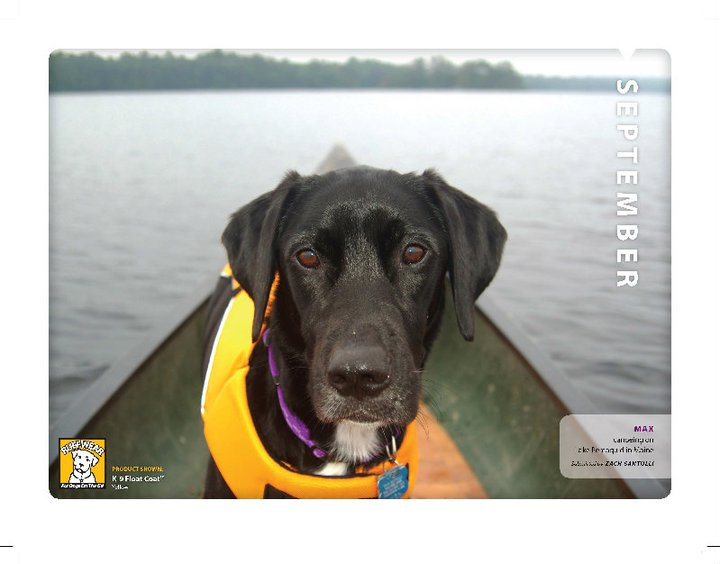 Kayak and Canoe ruffwear