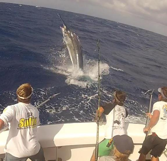 Fishing Take a look at this great photo of a 1,200 pound Black Marlin nearing the boat!