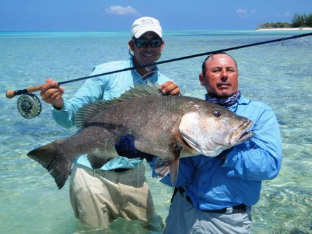 Fishing Cubera, this is the name of this fish, is relay nice, bery strong fish,  this is in Cuba< in Matanzas province, National Park, Las Salinas...