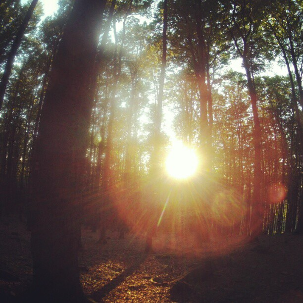 Camp and Hike Photo by tomashavel. http://instagram.com/tomashavel