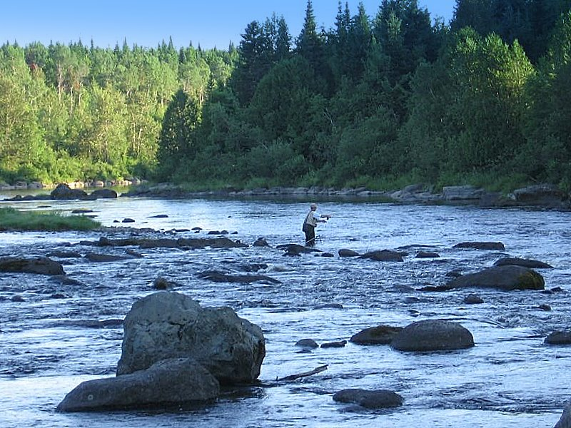 Flyfishing Fly fishing is an activity very appreciated by Quebecers.