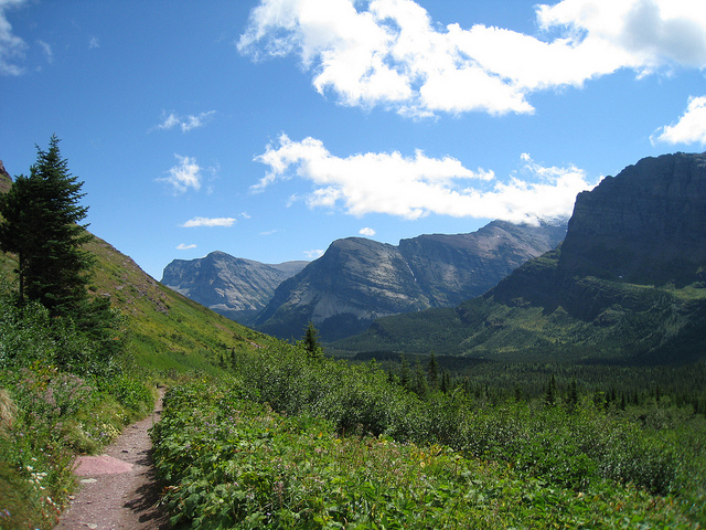 Camp and Hike Trail to Iceberg Lake, Glacier National