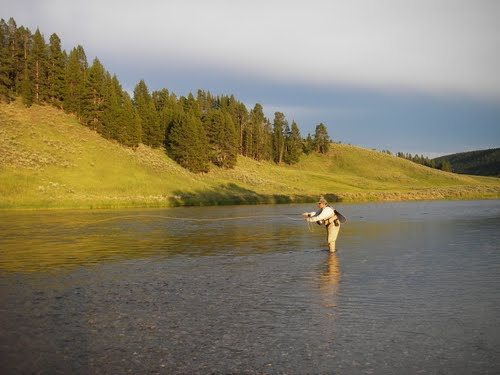 Flyfishing yellowstone fly fishing...this summer?