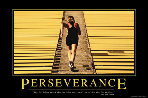 Fitness Perseverance