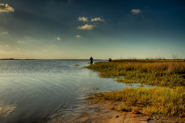 Fishing Fishing the banks of a saltwater lake in Texas