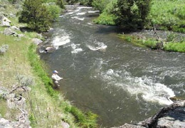 Flyfishing Montana Fly Fishing Rivers, Spring Creeks and Lakes