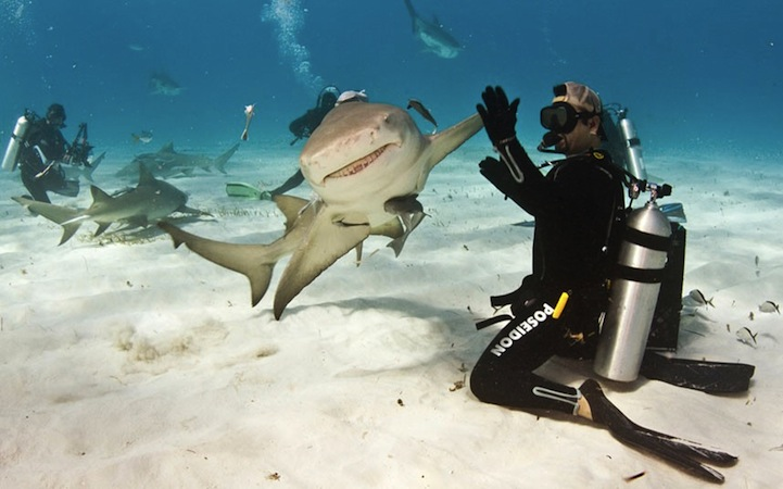 Scuba Be honest...you probably will never do anything as epic as this dude is doing.