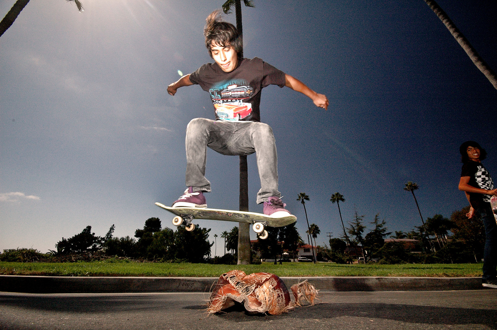 Skateboard Sick ollie over palm tree droppings