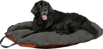 Hunting This hassle-free dog bed folds and zips into its own carry case, offering grab-it-and-go convenience and space-saving transport. Developed with a core philosophy of teaching and helping dogs live happier lives, this product was tested and approved by the world-famous Dog Whisperer, Cesar Millan, and his pack at the Dog Psychology Center in Santa Clarita, CA. Soft microsuede top with quilted poly-fill padding for comfort and insulation. Water-resistant base. Zippered exterior pockets for small items. PVC-free for the health of your pet. Imported.Dimensions: 44L x 34W x 5D. Color: Chocolate/Sienna/Ingot. - $74.99