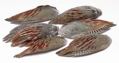 Hunting Train your dog with these real, freeze-dried pheasant wings. Teaches your dog the pheasant's scent and can be used alone or in conjunction with training dummies when working retrieves or on a string to work on pointing style. Especially helpful with scent training, blind retrieves and introduction to feathers. Available: 2 pack or 6 pack. Size: 2 PACK. Gender: Unisex. Type: Bird Training Accessories. - $6.99
