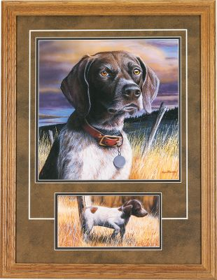 "Entertainment Outstanding portraits of some of America's top hunting breeds by award-winning artist Kevin T. Daniel. Each glass-covered print is set in a 1.5""-wide solid-oak frame with an attached sawtooth hanger. Deluxe-double-matted with simulated brown suede over dark brown. The main portrait shows the dog with a collar and name tag. Personalize your print by having your dog's name hand-printed onto the tag with dark brown, acid-free, archival-quality ink.Dimensions: 26.5""H x 20.5""W x 1""D.Available: Black Lab, Yellow Lab, Chocolate Lab, German Shorthair Pointer, Golden Retriever. - $99.99"