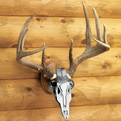 Hunting The solid-oak Wall/Table Panel transforms the Iron Buck into a European mount for display on a wall or table. Type: Antler Mounting Kits. - $17.99
