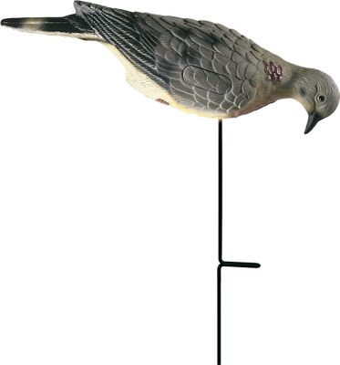 Hunting When doves see other birds on the ground they think they're missing out on an easy meal. Features four realistic dove decoys and four motion ground stakes. The stakes allow 360 of movement with the slightest breeze. Type: Dove Decoys. - $11.88