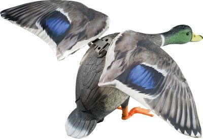Hunting More realistic than spinning-wing decoys, its lightweight, flexible wings deliver true-to-life flapping action. It also replicates the eye-catching flash and light/dark contrast of a landing duck with shiny, light-reflecting wing surfaces that mimic the sheen of natural feathers. Detachable wings for easy transport and storage. Includes: decoy body, three-piece metal stake, easy-on feet, T-stake mounting bracket, 6-volt battery, charger and one pair of wings. Imported. Available: Drake. Color: Natural. Type: Mallard Duck Decoys. - $109.99