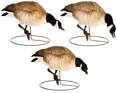 Hunting These lifelike decoys duplicate Lesser Canada geese, right down to their stubby beaks. They're smaller, lightweight, easier to carry and add realism to your spread. Sculpture Flock detail in the neck, head and tail makes them indistinguishable from custom decoys. The Dura-Connect head-attachment system handles the abuse decoys get during the season. The Snap-Loc Whisper Motion System base conveniently and easily locks the body in place during blustery conditions or allows the decoy to move freely with a lifelike motion in lighter breezes. Includes two left-, two center- and two right-feeder head positions. Per 6. - $109.99
