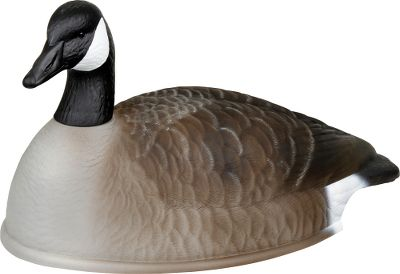 Hunting Ideal for beefing up your spread, these value-loaded 24 shells are durable, ultrarealistic and stack for easy transport. Includes 12 shells: six semi-active heads and six semi-feeding heads. Type: Canada Goose Decoys. - $99.88