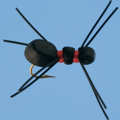 Flyfishing A meaty foam body gives this spider imitation tantalizing appeal. Per 2.Size: 6. - $2.88