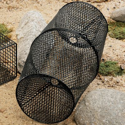 Fishing These traps make catching crawfish easy. They are made of vinyl-coated steel mesh for lasting durability, and the black color blends into the environment. Available: Square: 12 L x 12 W x 5 H. Round: 16-1/2 L with a 2-1/4 opening. Color: Black. Type: Bait Keepers. - $9.99