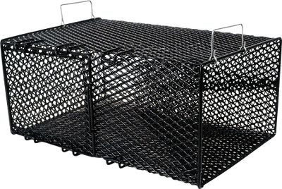 Fishing These traps are made of vinyl-coated steel mesh for lasting durability. Black color blends into the natural environment. Measures: 18 L x 8 W x 8 H with 1 opening. Color: Natural. Type: Bait Keepers. - $24.99